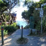 Top of the Path to Jibbon Beach (98780)